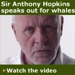 Sir Anthony Hopkins for Greenpeace