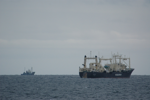 Whaling Fleet heading Home