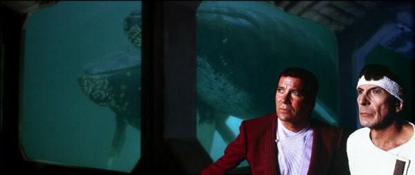 http://www.whales.org.au/news/images/Startrek-voyagehome.jpg
